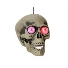 Skull Prop with Lights