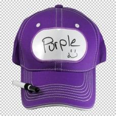 Billboard Cap Purple with Pen
