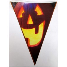Bunting Halloween Pumpkin  6m & 15 flag