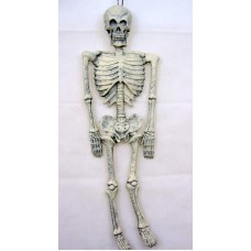 Decorative Skeleton 90cm Long