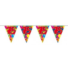Balloon Design Bunting No 75th  Birthday