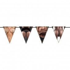 Bunting Happy Birthday Tits & Bits