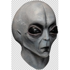 Mask Head Area 51