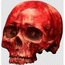Decorative Bloody Resin Skull