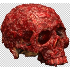 Decorative Bloody Scab Resin Skull
