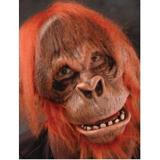 Costume, Mask, Gloves & Feet Orangutan